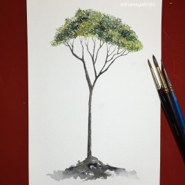 Jequitiba, Árvore 25, tree 25, aquarela, watercolor , 15 x 21 cm. Disponível / Available