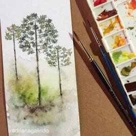 Araucarias, tree 29, árvore 29 watercolor, aquarela. SOLD
