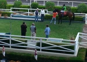 Trainer Bob Baffert and Infosec in the Winner's Circle