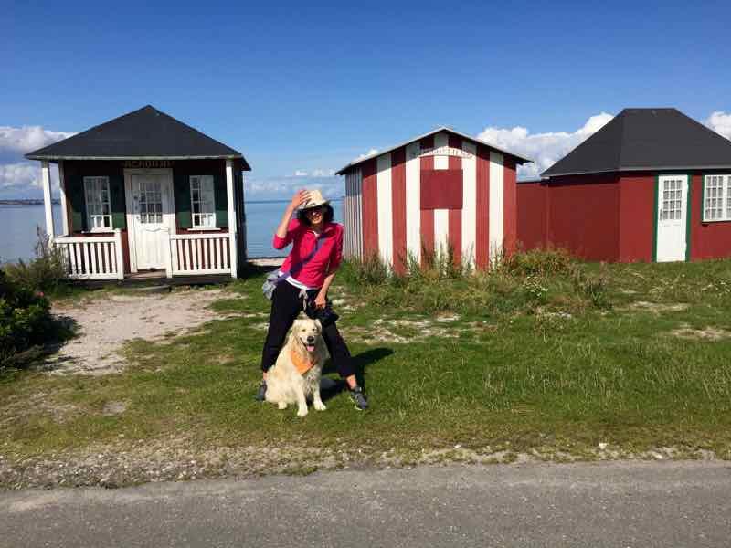 Adriana Licio Danish Cozy Mystery Aero Island