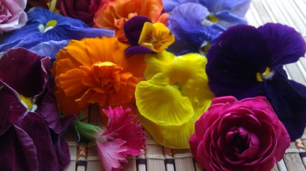 Cooking with flowers #ABRecipes