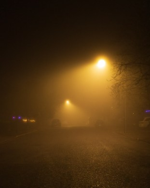 Foggy Lights