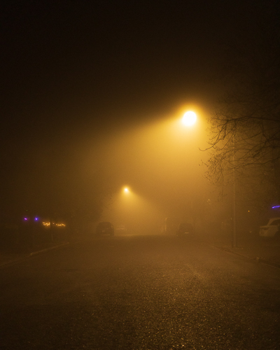Foggy Lights