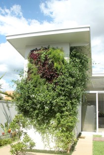 adriano-gronard-paisagismo-arquitetura-interiores-jardim-vertical-jasmim-adrianogronardphoto
