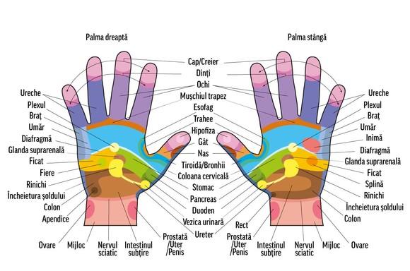 Masajul palmelor și degetelor