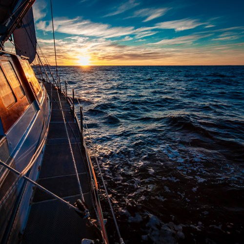 Cape Horn Sunrise Southern Ocean Pelagic Australis