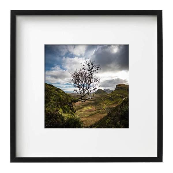 Storr | Isle of Skye