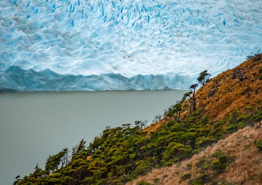 Hollandia Glacier Beagle Channel Chile
