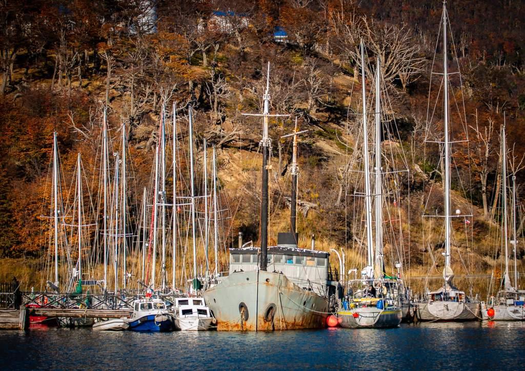 Macalvi Puerto Williams Beagle Channel Chile