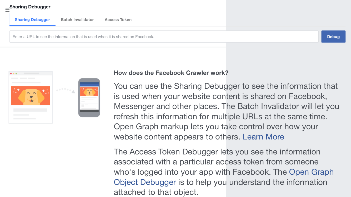 Step 1: Go to Facebook Debug Page