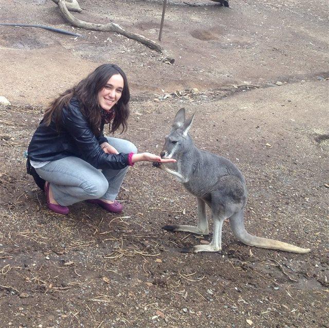 Estudiar en el exterior: China, Australia y Japón seducen con becas