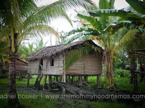 Bokoro's house in the village of Mirowu, Western Province of PNG.