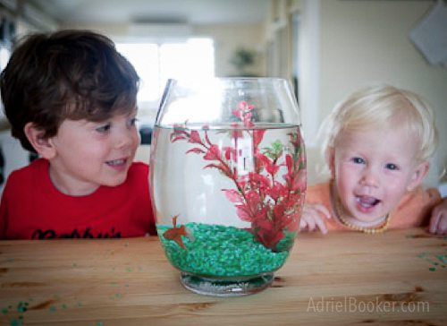 Our stupid fish died. And our baby died, too.