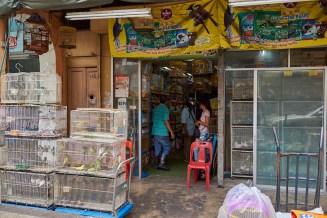 Local pet shop