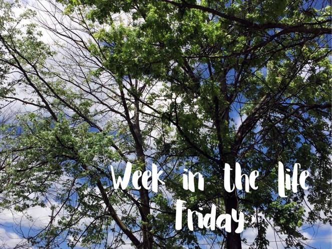 Friday Intro