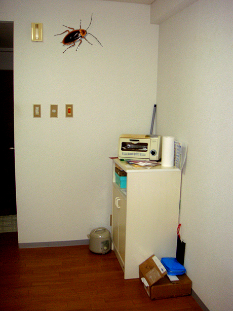 his is an old photo of my apartment that I took shortly after I moved in. There's more in there now, like a table, chairs, and a microwave. Pretty fancy stuff.  Also note, the cockroach is PERFECTLY TO SCALE.
