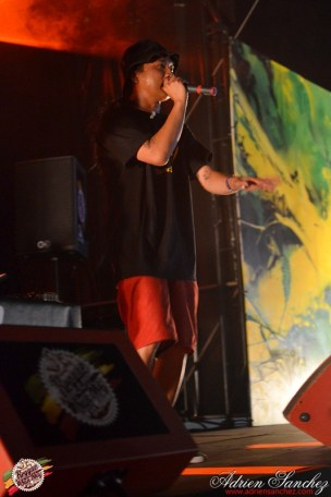 Photo 2014 Reggae Sun Ska RSS Bordeaux Symbiz Photographe Adrien SANCHEZ INFANTE (6)