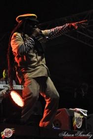 Photo 2014 Reggae Sun Ska RSS Bordeaux Winston Jarrett Natty will fly again Photographe Adrien SANCHEZ INFANTE (1)