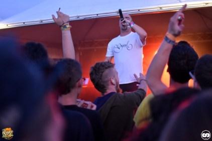 Reggae Sun ska photo adrien sanchez infante bordeaux 2016 (5)