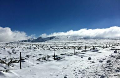 Sierra de Bejar - Nieve 1