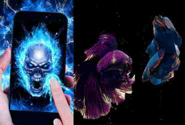 Top 10 Free Live Wallpaper Apps for Android