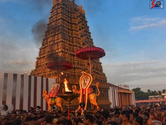 நல்லூர் கந்தசுவாமி ஆலய 8 ம் நாள் உற்சவம் 5