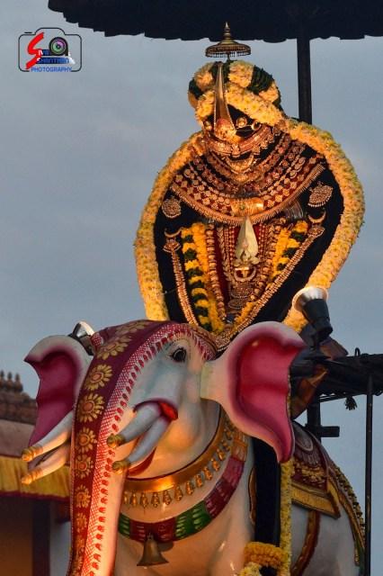நல்லூர் கந்தசுவாமி ஆலய 9 ம் நாள் உற்சவம் 11