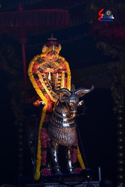 நல்லூர் கந்தசுவாமி ஆலய 15 ம் நாள் உற்சவம் 3