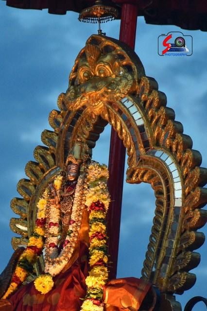 நல்லூர் கந்தசுவாமி ஆலய 15 ம் நாள் உற்சவம் 14