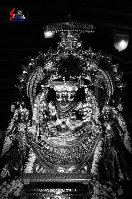 நல்லூர் கந்தசுவாமி ஆலய 18 ம் நாள் உற்சவம் 5