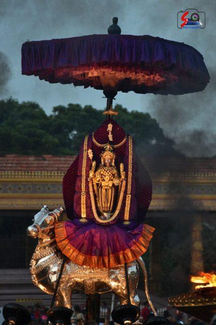 நல்லூர் கந்தசுவாமி கோவில் கந்தசஷ்டி உற்சவம் – 3ம் நாள் 8