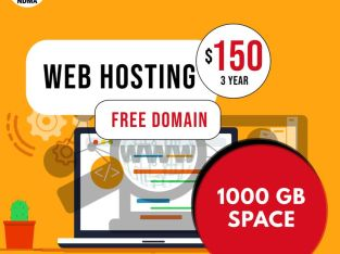 Web Hosting and Domain Services