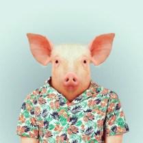 Fashion-Zoo-Animals14