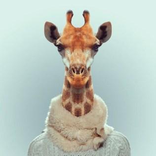Fashion-Zoo-Animals7