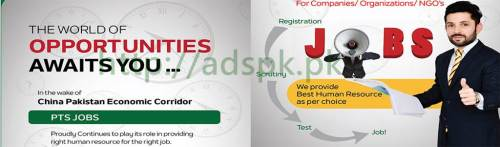 PTS Jobs China Pakistan Economic Corridor CPEC PTS Jobs 2017 for Professional Companies Organizations NGOs Apply Online Now