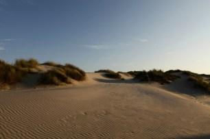 Dune matin