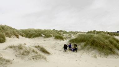 Dune, pique-nique