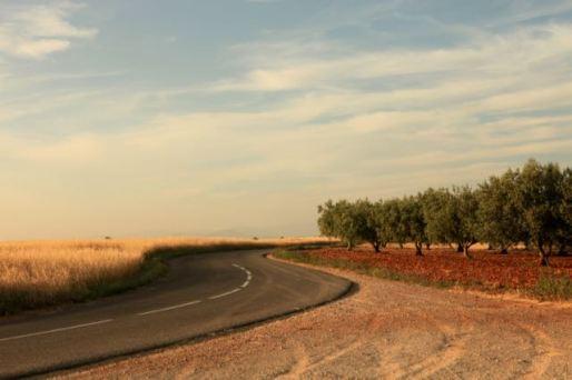 Route le soir dans les champs