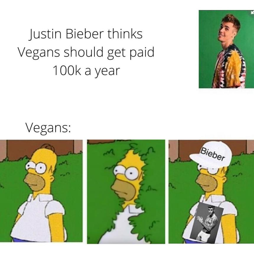 Vegan supporters memes