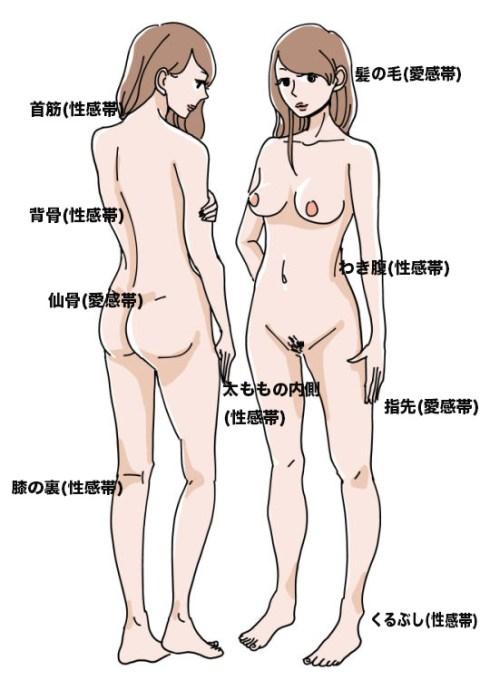 女性の性感帯