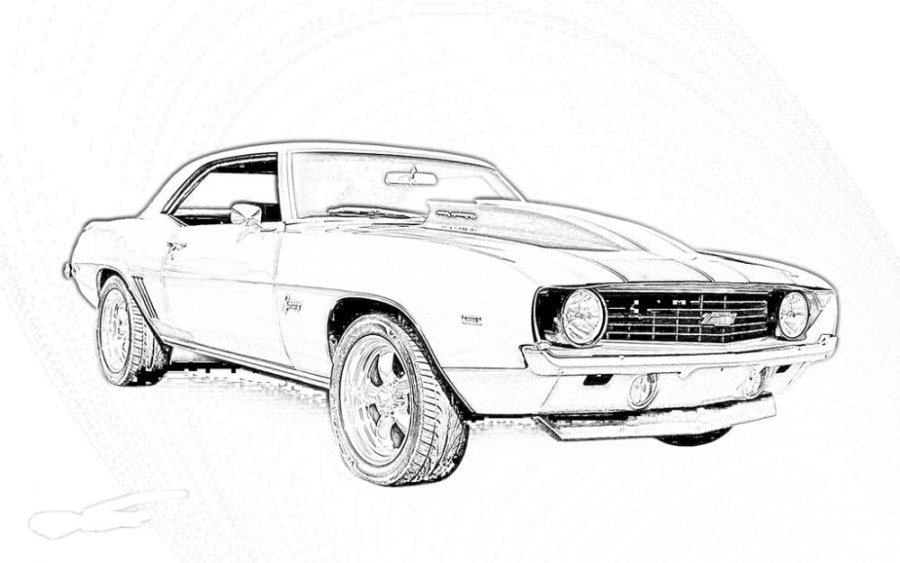 20 Realistic Coloring Pages Images   FREE COLORING PAGES realistic coloring pages   camaro coloring pages