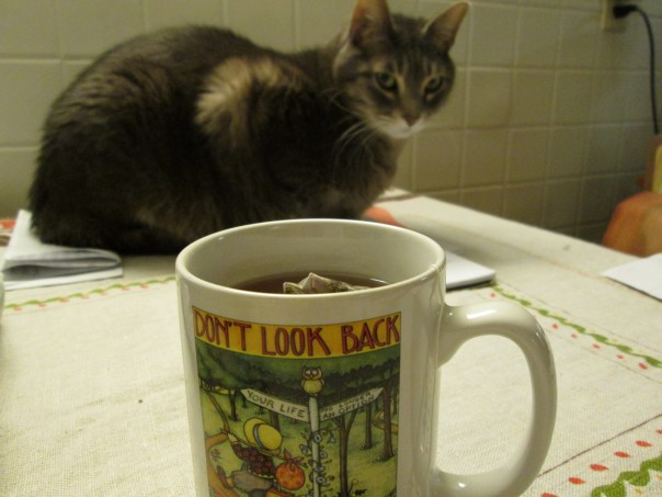 Tea & Cat