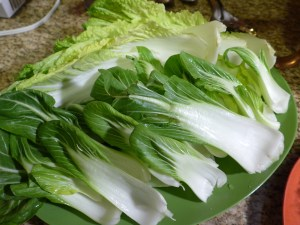 Napa cabbage and baby bok choy