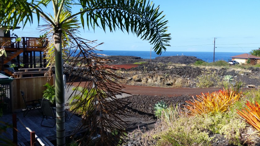 This view of the water, over a lava flow, was MaryKate's view for the past week. Not sure why she came home.