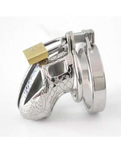 cock chastity cage spiked ring