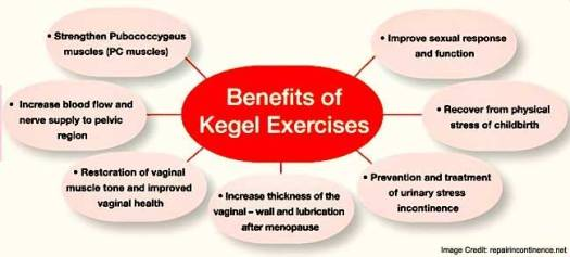 Benefits of Kegel Exercises FAQ Image
