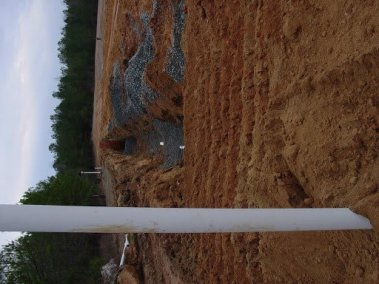 Talbot Environmental Project DSC06602