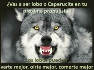 160710 Lobo