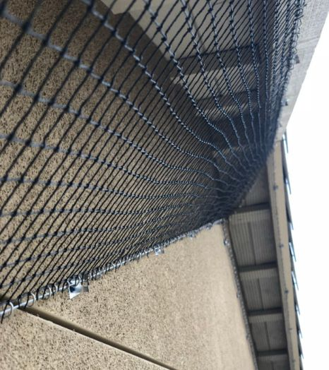 Professionally-installed Bird Netting at a Residential Property