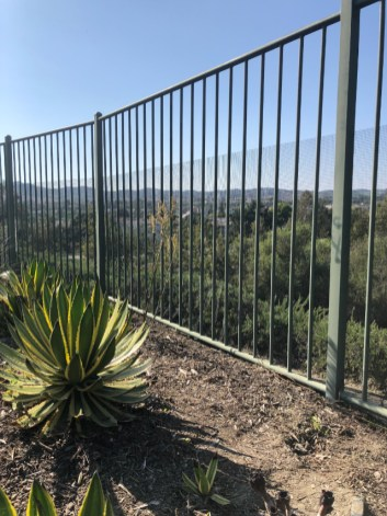 view of gate in garden with wildlife exclusion fence that blocks animals but not the homeowner's view. installed by Advanced Wildlife Removal.